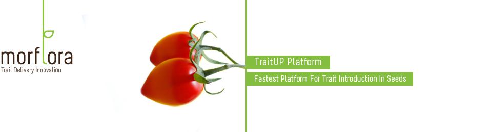 TraitUP – генетическая революция в сельском хозяйстве