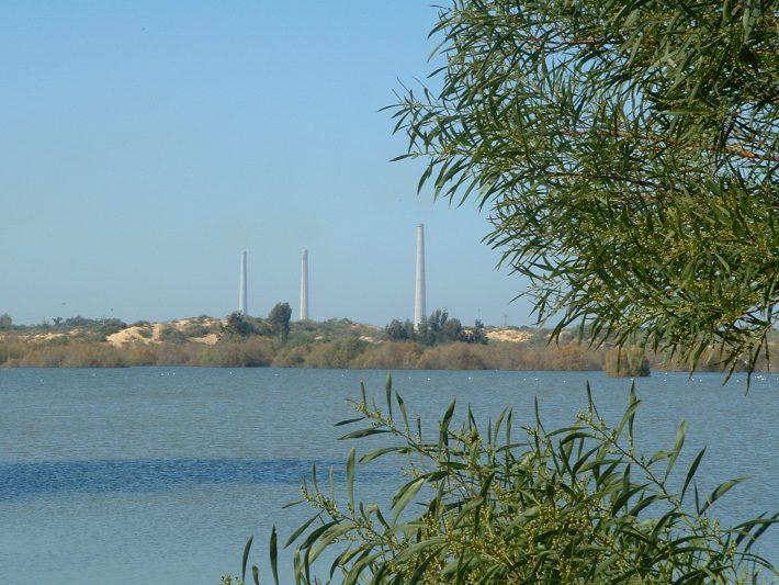 Израиль – мировой лидер по использованию переработанных сточных вод