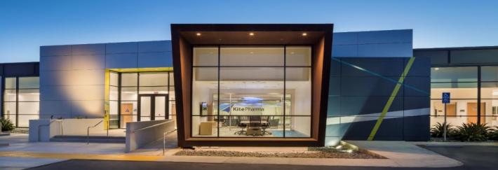 Gilead поглощает израильский стартап Kite Pharma за $11,9 млрд